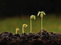 Cresçam Cada Vez Mais