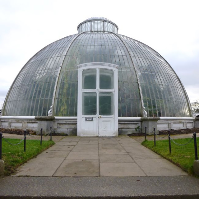 The Kew Gardens Palm House in January