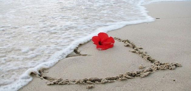 الحب لحياتنا هو الشريان