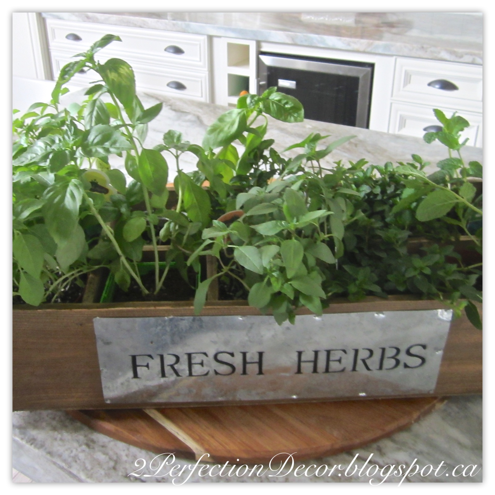 2perfection Decor New Herb Garden For Our Kitchen