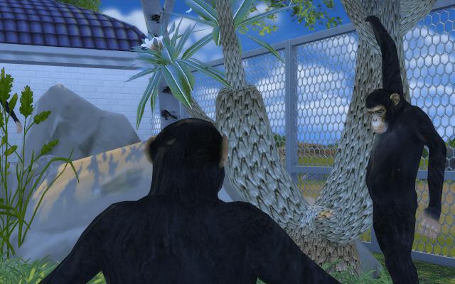 télécharger chimpanzés sims 4