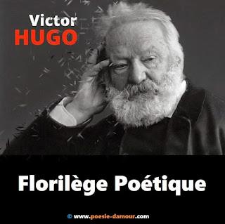Victor Hugo : Poète romantique français