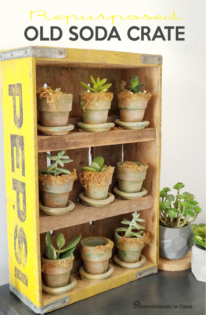 terracotta pots with dry brush paint holding succulents