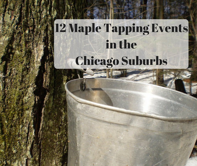 12 Maple Sugaring Events in the Chicago Suburbs 2018