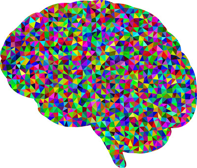 Colourful brain representing neurodiversity or neurodisability