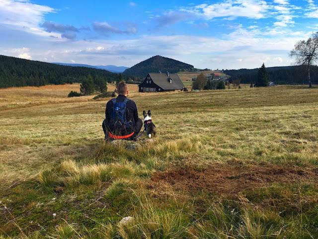 podróże z psem, wakacje z psem, izery z psem, z psem w góry