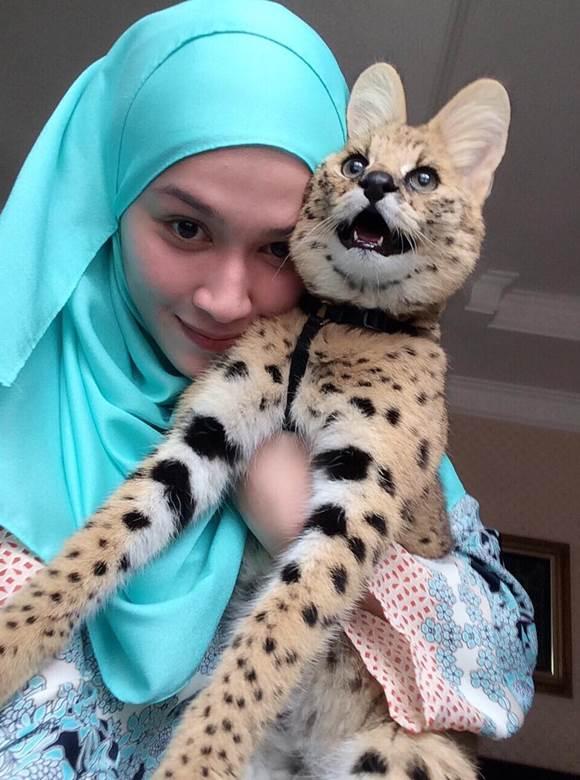 Niena Baharun Dengan Savannah Cat