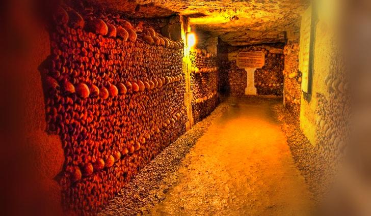 paris kafatası müzesi