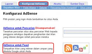 Panduan lengkap Setting adsense for domain