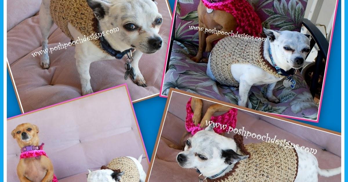 Max S Bharness Bcrochet Bpattern on Tutorial Dog Harness Pattern