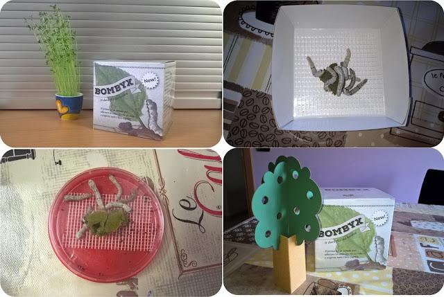 www.smart-bugs.com per bambini