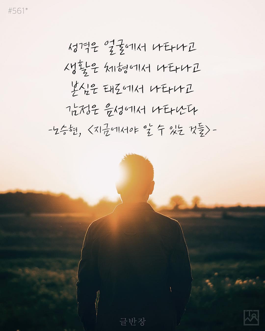 나타남 - 노승현, <지금에서야 알 수 있는 것들>