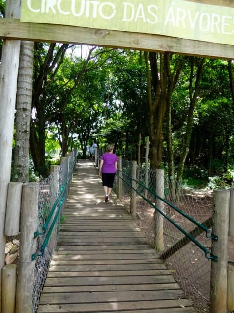 Parque Villa-Lobos - Trilha Circuito das Árvores