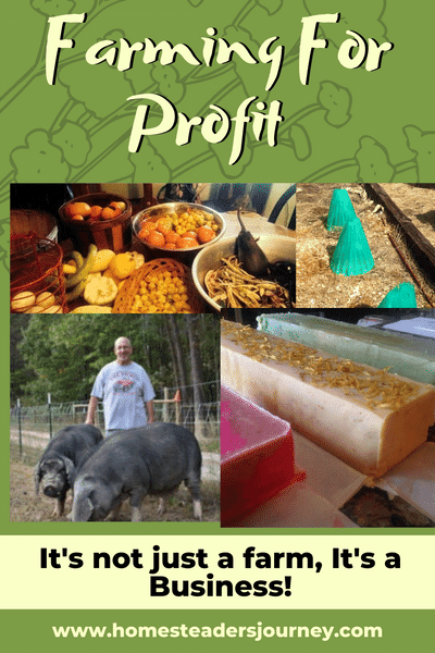 Farming for profit can be a hard business model. You need to know farming skills and business skills! But it can be done! #farmingforprofit #homesteader