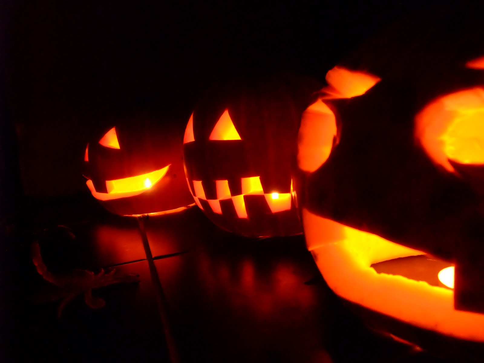 halloween marked the celtic new year in ireland was originally called samhain which translates to summers end in gaelic