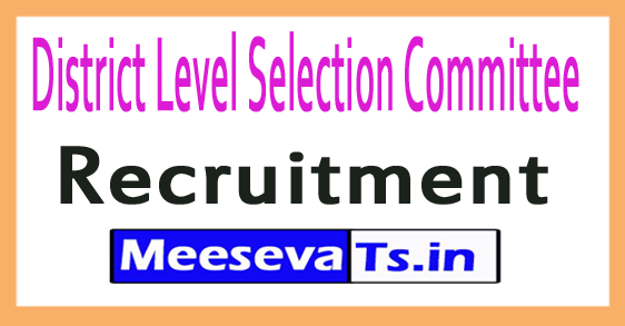 District Level Selection Committee DLSC Recruitment