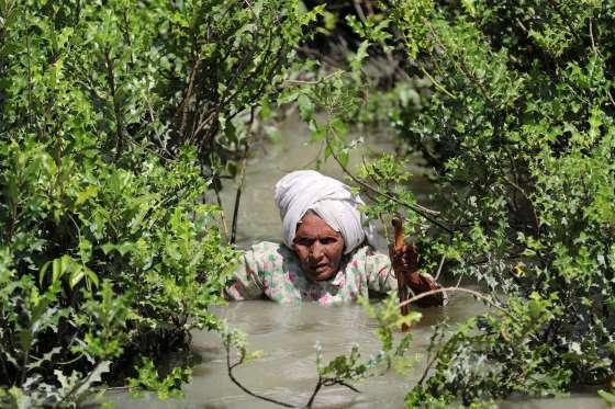 Nenek%2BRohingya - Foto-Foto Terbaru Pengungsi Rohingya, Dijamin Berkaca-kaca Melihatnya