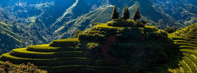 Ha Giang - A land of natural landscapes and special dishes 7