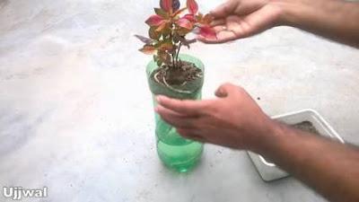 cara membuat vas bunga
