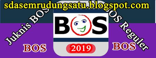 Download Juknis BOS Reguler Terbaru Tahun 2019