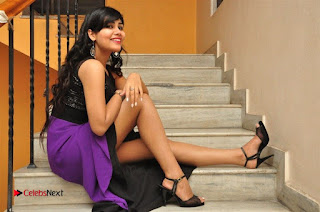 Telugu Actress Rachana Smith Stills at Money is Honey Audio Release  0119.jpg