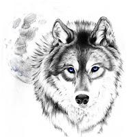 тату волка фото красивое