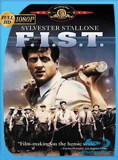 F.I.S.T. Simbolo De Fuerza 1978  [1080p] Latino [GoogleDrive] DizonHD
