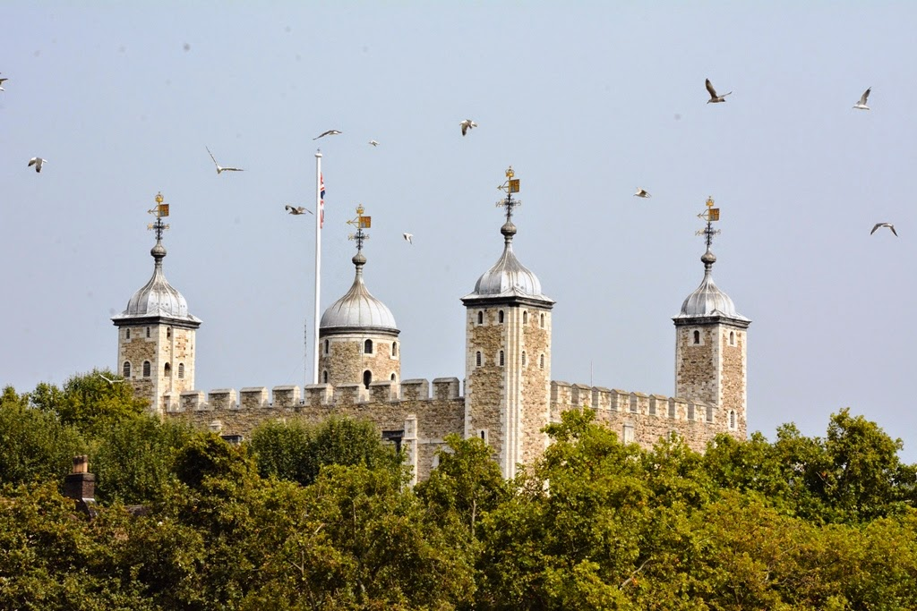 The Tower of London birds