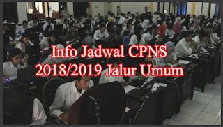jadwal cpns 2018 2019