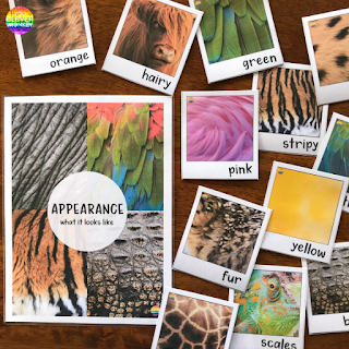 Animal Adjective Word Wall Posters | you clever monkey