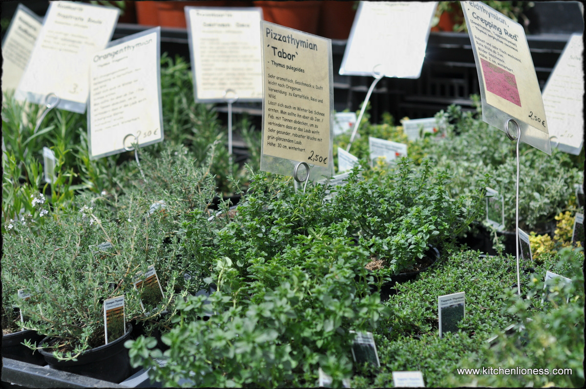 The Kitchen Lioness Heritage Plant And Garden Show Jron Un