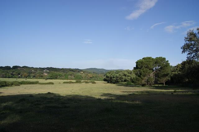 Paleopolje del sector Trassierra Ermitas en las cercanías de la Fuente del Elefante .