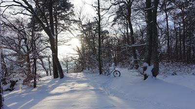 Mehr Schnee als erwartet bei der Roggenfluh