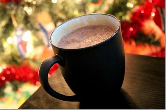Hazelnut Hot Chocolate Mix Recipe Powder