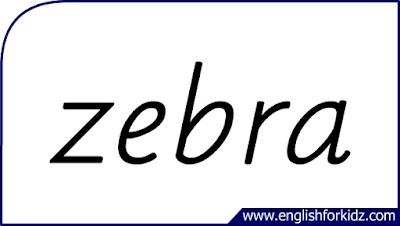 zebra flashcard, single word