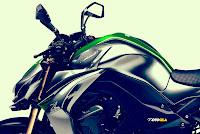 Kawasaki Z1000 2014 bpdy