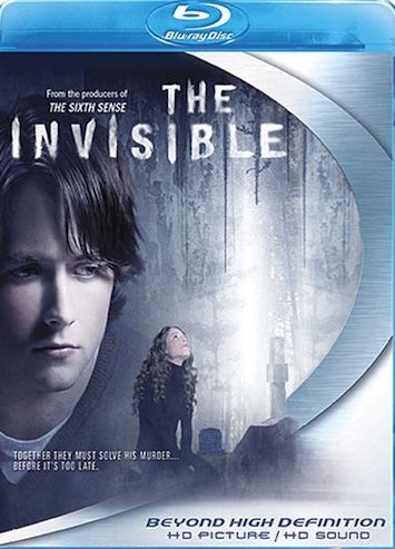 The Invisible 2007 Dual Audio Hindi 480p BluRay 300mb