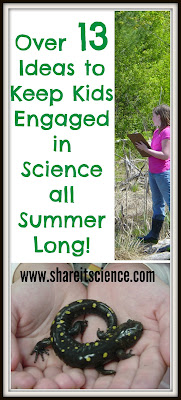 http://www.shareitscience.com/2015/05/over-13-ideas-to-keep-kids-engaged-in.html