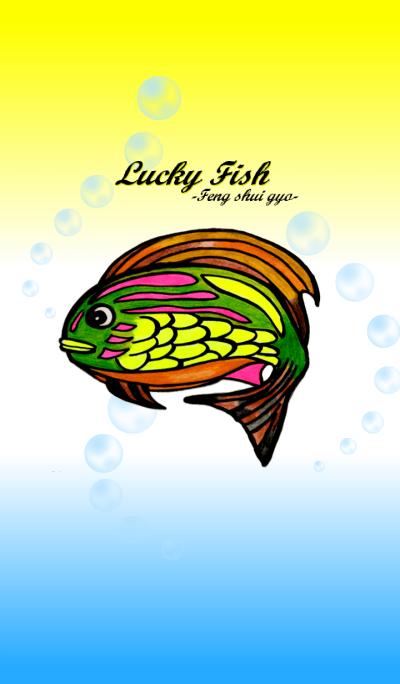 Lucky fish -Feng shui gyo-