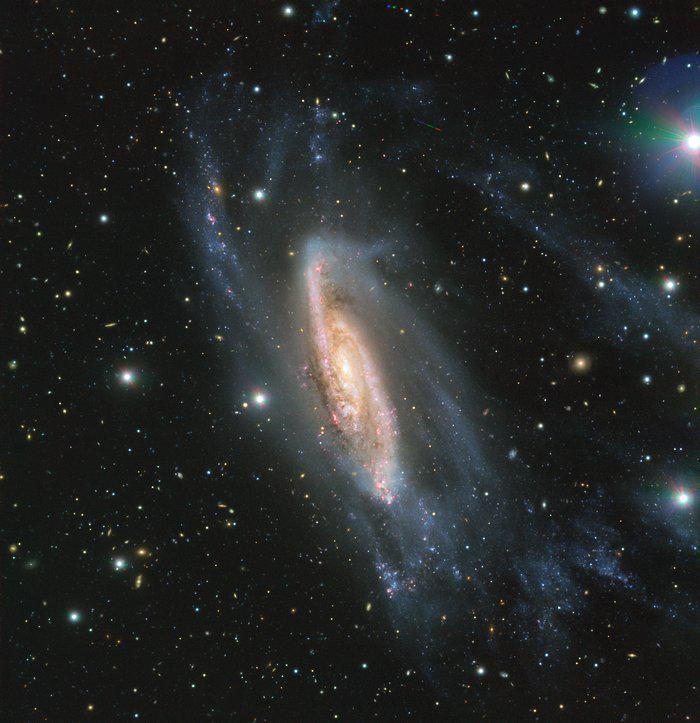 галактика NGC 3981