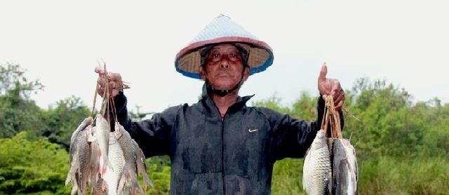 Budidaya Ikan Tawes Kolam Terpal untuk Usaha dan Bisnis