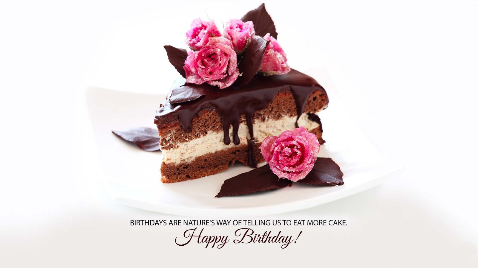 Happy Birth Day Images Love Images Of Love