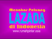 Menakar Peluang LAZADA di Pasar Indonesia
