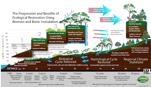 Principles and Progression of Ecological Restoration