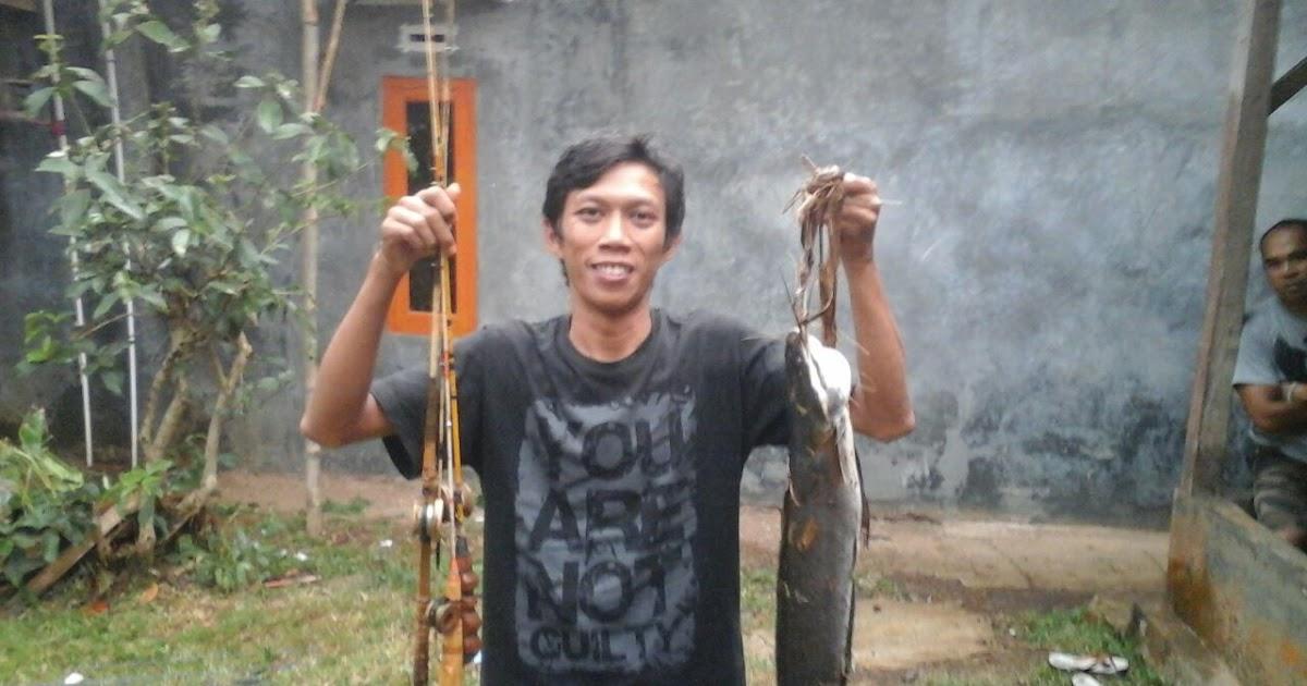 Sahabat Mancing Cara Mancing Lele Dan Umpan Ampuh Lele Babon Di Sungai