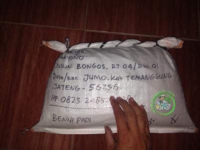 DARYONO Temanggung, Jateng  (Sesudah Packing)
