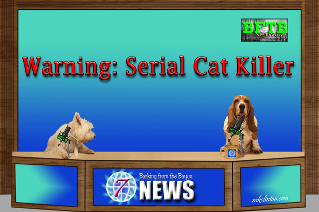 BFTB NETWoof News Warning: Serial cat killer in Washington state