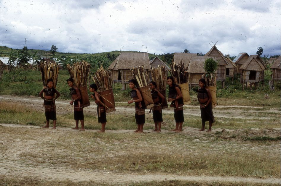 bob mckerrow wayfarer a history of the bana hill tribe return home permit return home page