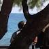 «Ειδυλλιακές» διακοπές για τον Τσίπρα μαζί με τον Πολάκη στο Ροδάκινο του Ρεθύμνου