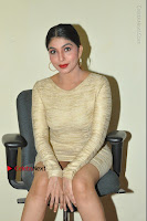 Actress Pooja Roshan Stills in Golden Short Dress at Box Movie Audio Launch  0062.JPG